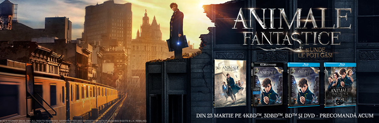 Fantastic Beasts and Where to Find Them – disponibil pe Blu-ray si DVD